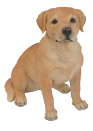 beeldje Labrador blond zittend 22 cm
