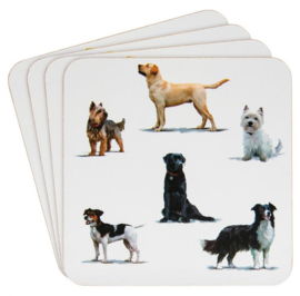 onderzetters diverse honden