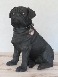 groot beeld Mopshond zwart | 34 cm