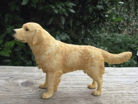 beeldje Golden Retriever