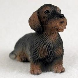 miniatuur Teckel ruwhaar