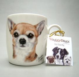 mok Chihuahua korthaar