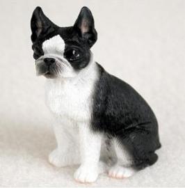 miniatuur Boston Terrier