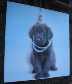 3D print Labrador chocolate
