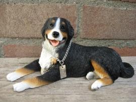 beeldje Appenzeller Sennenhond