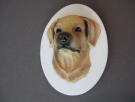koelkastmagneet Labrador blond