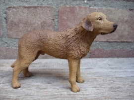 beeldje Chesapeake Bay Retriever