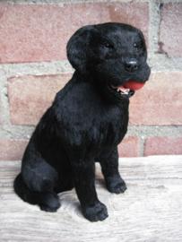 beeldje Labrador zwart met bal met échte vacht