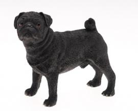 beeldje Mopshond zwart