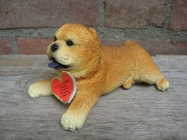 beeldje Chow Chow puppy