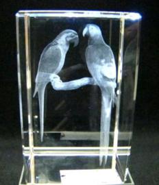 3D laserblokje/glasblokje papegaaien