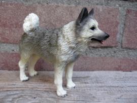 beeldje Noorse Elandhond/Elkhound