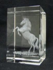 3D laserblokje/glasblokje paard