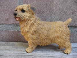beeldje Norfolk Terrier