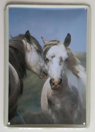metalen bordje Twee paarden