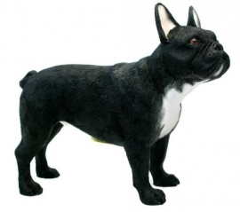beeldje Franse Bulldog zwart