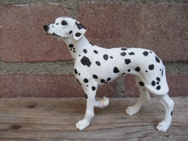 beeldje Dalmatier