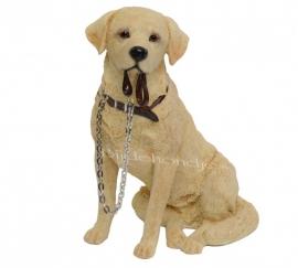 beeldje Labrador blond met riem