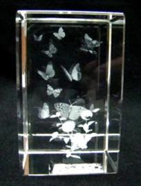 3D laserblokje/glasblokje vlinders
