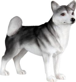 beeldje Husky staand