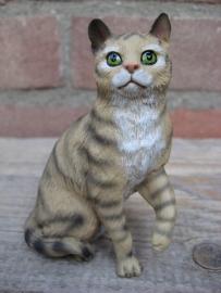 Kattenbeeldje/poezenbeeldje bruin tabby zittend