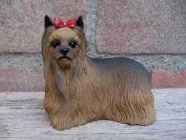 beeldje Yorkshire Terrier
