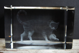 3D laserblokje/glasblokje kat