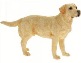 beeldje Labrador blond staand