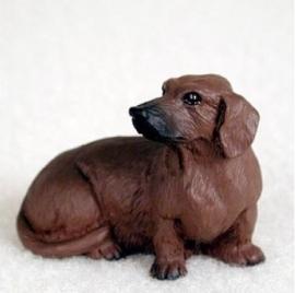 miniatuur Teckel rood korthaar