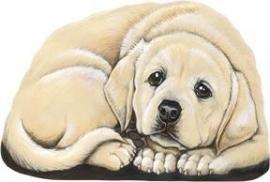 presse papier/mini deurstop Labrador blond