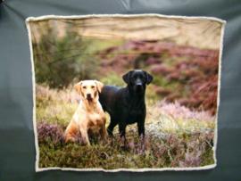 plaid met blonde en zwarte Labrador