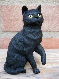 Kattenbeeldje/poezenbeeldje zwart zittend