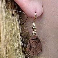 oorhangers Amerikaanse Cocker spaniel bruin