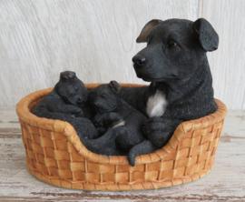 beeldje Staffordshire Terriër zwart met jongen