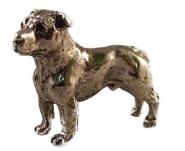 miniatuur Staffordshire Bull Terriër