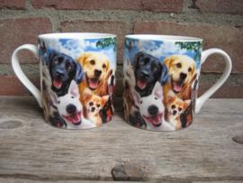 """mok """"Selfies"""" van diverse hondenrassen"""