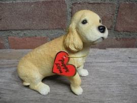 beeldje Cocker spaniel puppy blond