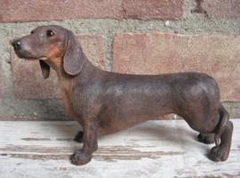 beeldje Teckel korthaar bruin
