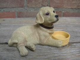 beeldje Labrador blond met voerbakje