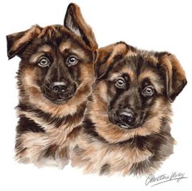 wenskaart Duitse Herder pups