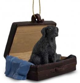 Flatcoated Retriever in koffertje