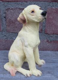 beeldje Labrador blond zittend