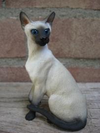 kattenbeeldje/poezenbeeldje Siamees