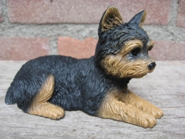 beeldje Yorkshire Terrier puppy