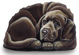presse papier/mini deurstop Labrador chocolate