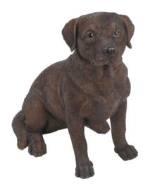 beeldje Labrador chocolate zittend 22 cm