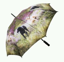 paraplu Labradors