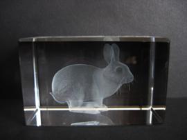 3D laserblokje/glasblokje konijn