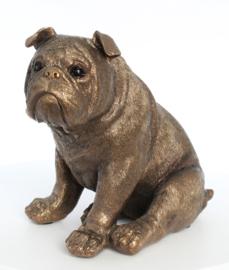 beeldje Engelse Bulldog bronskleur