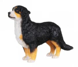 beeldje Berner Sennenhond staand